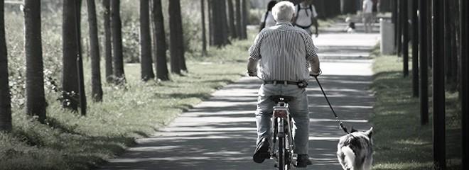 Imagen de un anciano montando en bicicleta y paseando a su perro, por un camino rodeado de árboles