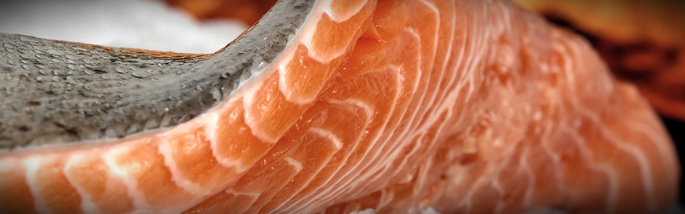 Imagen a color que muestra un corte transversal de un trozo de salmón crudo