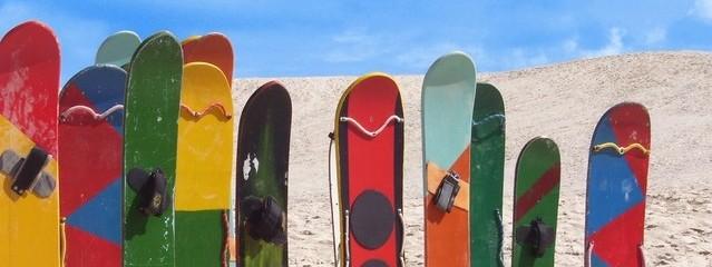 Imagen de tablas de skate surf de colores clavadas en la arena de la playa